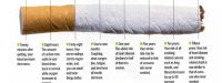 infographic of what happens when you quit smoking
